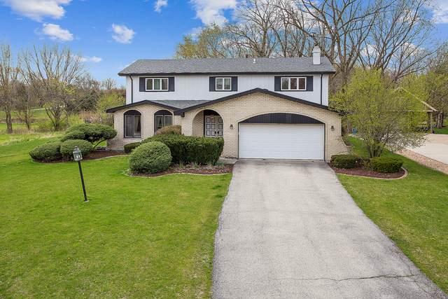 13646 Meath Circle, Homer Glen, IL 60491 (MLS #11064456) :: Helen Oliveri Real Estate