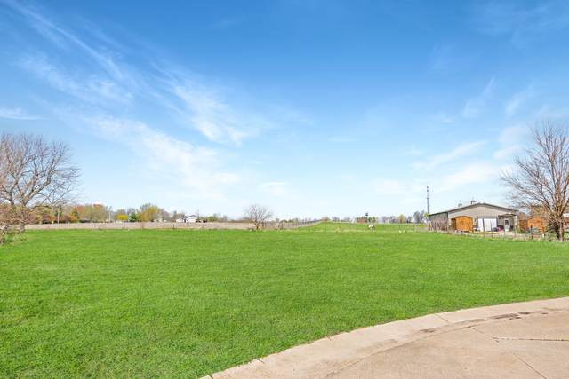 Lot #10 Fox Run Court, LEROY, IL 61752 (MLS #11065035) :: Janet Jurich