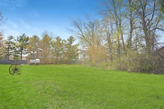 Lot #7 Fox Run Court, LEROY, IL 61752 (MLS #11065055) :: Janet Jurich