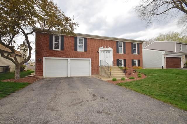 920 Brandywine Drive, Roselle, IL 60172 (MLS #11065146) :: Helen Oliveri Real Estate