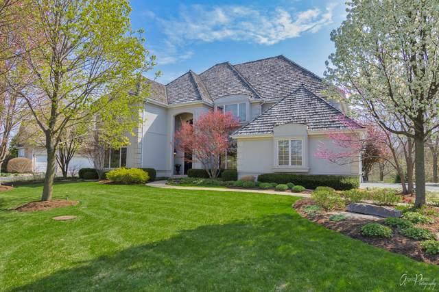 21817 Meadowlark Drive, Kildeer, IL 60047 (MLS #11065474) :: Helen Oliveri Real Estate