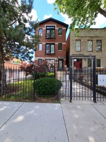 813 S Bell Avenue #3, Chicago, IL 60612 (MLS #11065525) :: The Spaniak Team