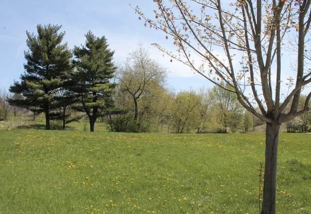 7203 Daybreak Lane, Long Grove, IL 60060 (MLS #11065591) :: BN Homes Group