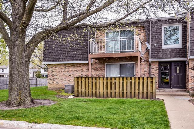1802 Plum Grove Road 2A, Rolling Meadows, IL 60008 (MLS #11065728) :: Littlefield Group