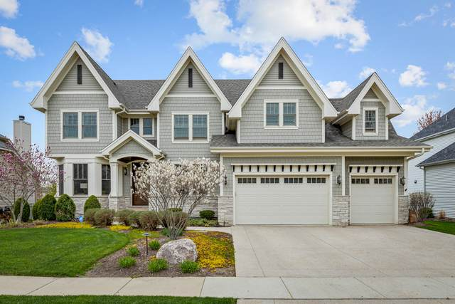 579 Cole Drive, South Elgin, IL 60177 (MLS #11065816) :: Littlefield Group