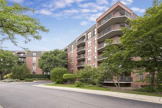 511 Aurora Avenue #205, Naperville, IL 60540 (MLS #11066064) :: Littlefield Group