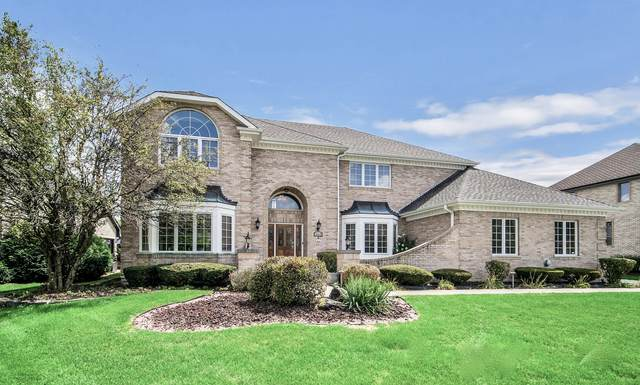 14613 Crystal Tree Drive, Orland Park, IL 60462 (MLS #11066403) :: BN Homes Group