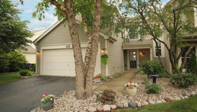 125 Horizon Circle, Carol Stream, IL 60188 (MLS #11066485) :: Littlefield Group