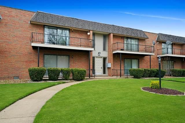 627 N Carroll Parkway #206, Glenwood, IL 60425 (MLS #11066569) :: Helen Oliveri Real Estate