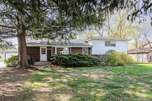 829 Hitchcock Avenue, Lisle, IL 60532 (MLS #11066586) :: Carolyn and Hillary Homes