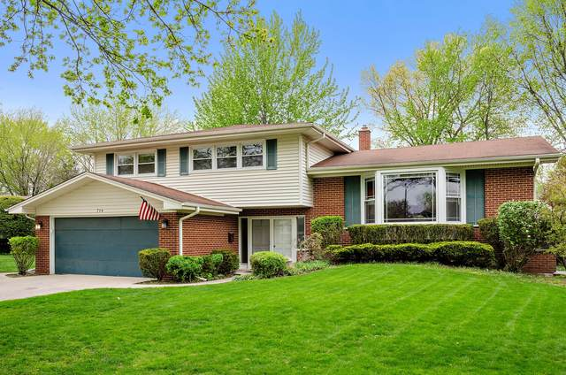 714 E Cherry Lane, Arlington Heights, IL 60004 (MLS #11066670) :: Littlefield Group