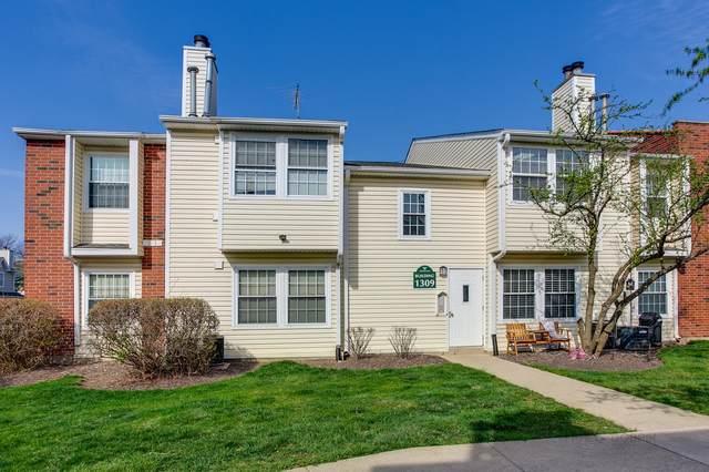 1309 Wyndham Drive #207, Palatine, IL 60074 (MLS #11067661) :: Helen Oliveri Real Estate