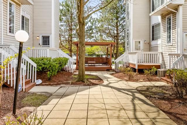 316 Autumn Wind Court, Bolingbrook, IL 60440 (MLS #11067909) :: Helen Oliveri Real Estate