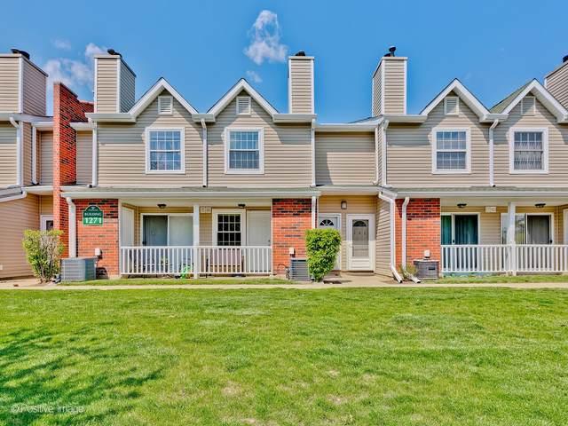 1271 Wyndham Lane #103, Palatine, IL 60074 (MLS #11068458) :: Helen Oliveri Real Estate