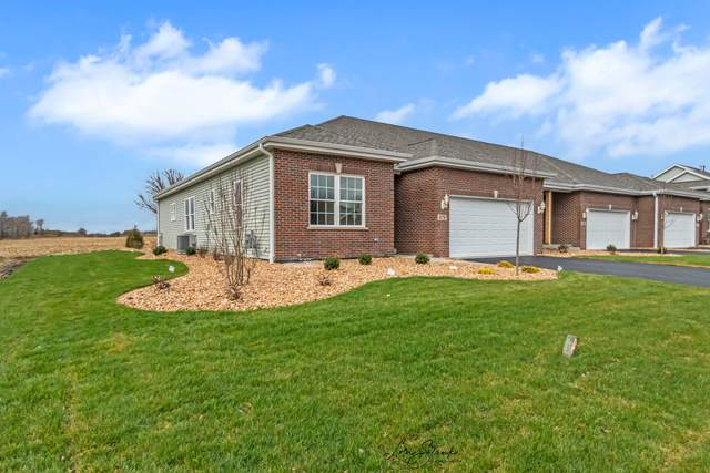 838 Oriole Drive, Peotone, IL 60468 (MLS #11068533) :: Carolyn and Hillary Homes
