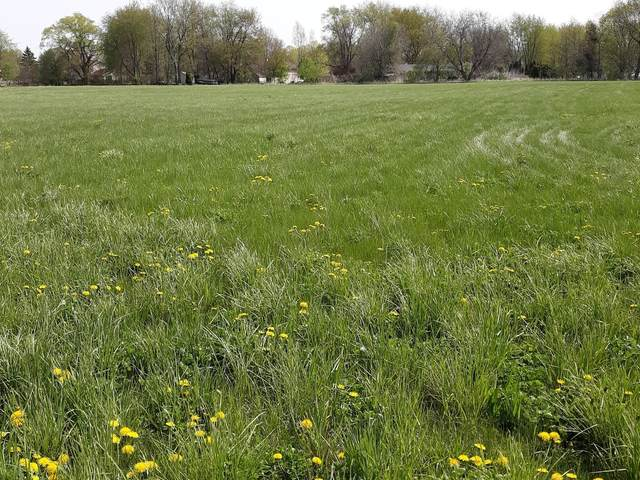 0 Vilman Road, Plano, IL 60545 (MLS #11068751) :: Helen Oliveri Real Estate