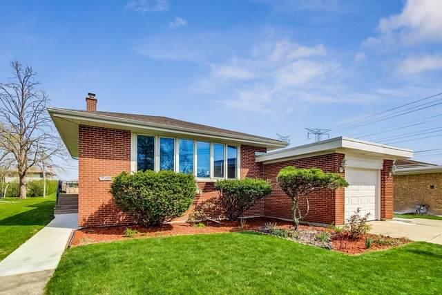 9113 Belleforte Avenue, Morton Grove, IL 60053 (MLS #11069074) :: Littlefield Group