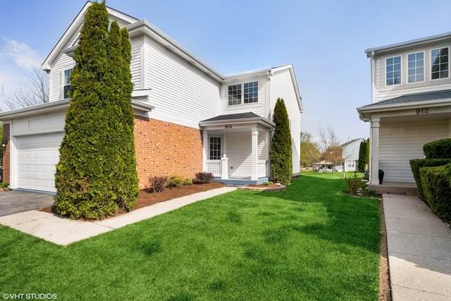 904 Blackburn Drive, Grayslake, IL 60030 (MLS #11069095) :: Helen Oliveri Real Estate