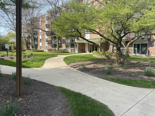 5S040 Pebblewood Lane W104, Naperville, IL 60563 (MLS #11069283) :: Littlefield Group
