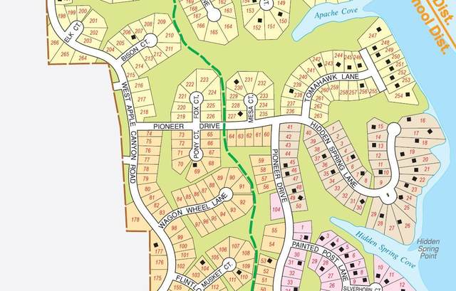 7A226 Fox Court, Apple River, IL 61001 (MLS #11069455) :: Helen Oliveri Real Estate