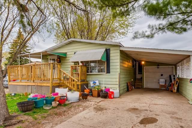 186 Phaeton Drive, Wheeling, IL 60090 (MLS #11069493) :: Littlefield Group