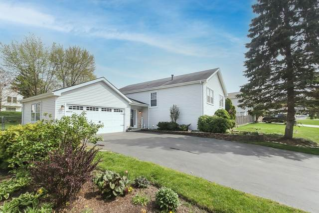 810 Red Bridge Road, Lake Zurich, IL 60047 (MLS #11069496) :: Helen Oliveri Real Estate