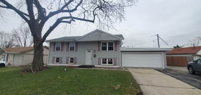 437 Clifton Avenue, Romeoville, IL 60446 (MLS #11069691) :: Helen Oliveri Real Estate