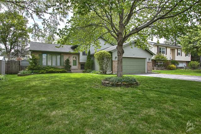 743 Durham Lane, Grayslake, IL 60030 (MLS #11069740) :: BN Homes Group