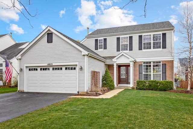 10825 Shenandoah Court, Huntley, IL 60142 (MLS #11070217) :: Helen Oliveri Real Estate