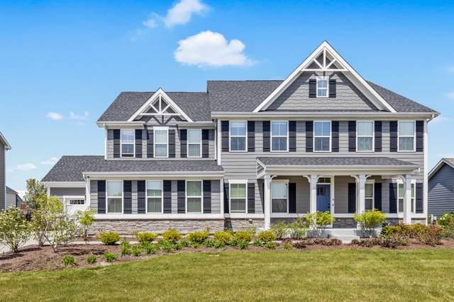 4852 Shumard Lane, Naperville, IL 60564 (MLS #11070342) :: Helen Oliveri Real Estate