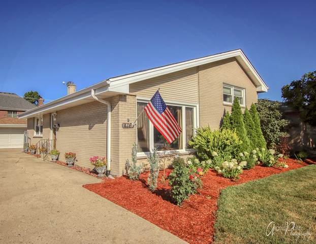 416 Emmerson Avenue, Itasca, IL 60143 (MLS #11070582) :: Helen Oliveri Real Estate