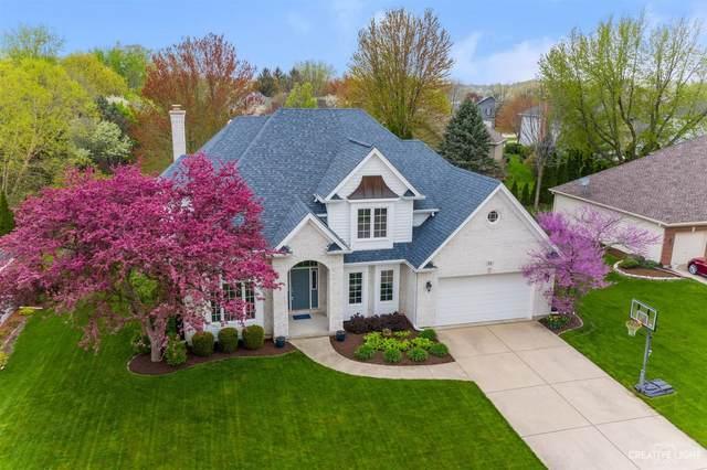 11 Birchwood Court, Sugar Grove, IL 60554 (MLS #11070817) :: BN Homes Group