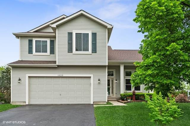 1025 Wrens Gate, Mundelein, IL 60060 (MLS #11070822) :: O'Neil Property Group