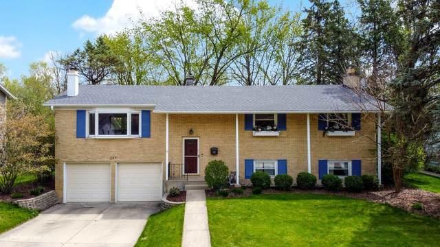 347 N Williams Drive, Palatine, IL 60074 (MLS #11070936) :: Ryan Dallas Real Estate
