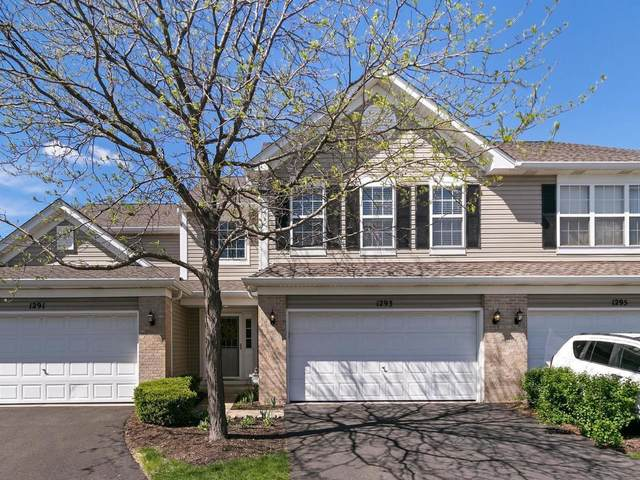 1293 Merrimack Court #1293, Crystal Lake, IL 60014 (MLS #11071072) :: Ani Real Estate