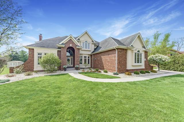 20141 W White Tail Court, Elwood, IL 60421 (MLS #11071201) :: BN Homes Group