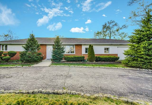 8910 S 84th Avenue, Hickory Hills, IL 60457 (MLS #11071327) :: Littlefield Group