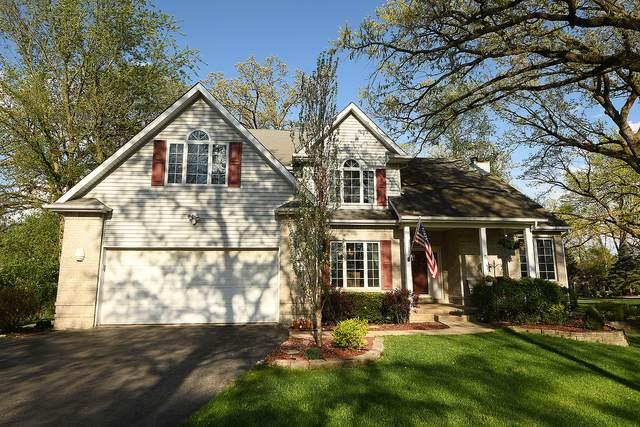 22825 S Patricia Lane, Channahon, IL 60410 (MLS #11071514) :: Helen Oliveri Real Estate