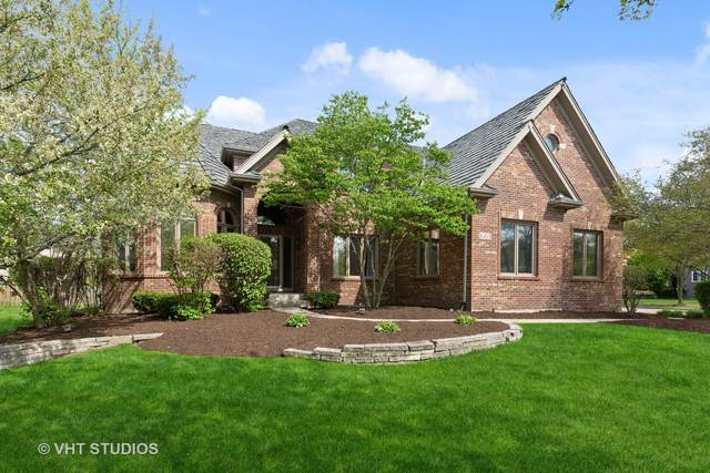 661 Waters Edge Drive, South Elgin, IL 60177 (MLS #11071657) :: Littlefield Group