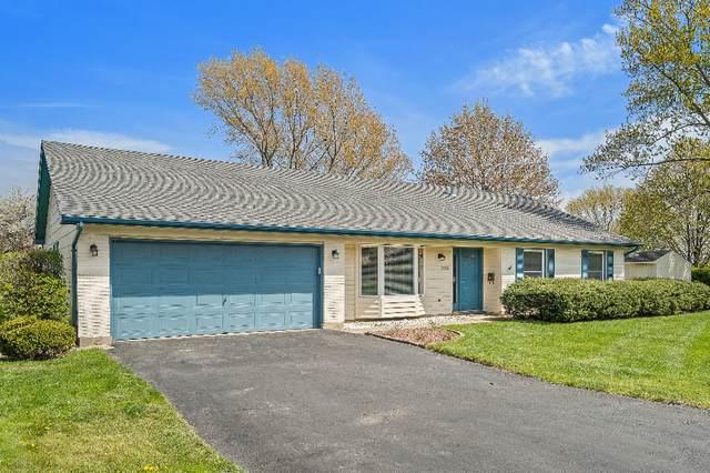 440 Red Bridge Road, Lake Zurich, IL 60047 (MLS #11071771) :: Helen Oliveri Real Estate