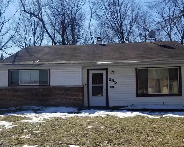 255 Mantua Street, Park Forest, IL 60466 (MLS #11071789) :: Helen Oliveri Real Estate