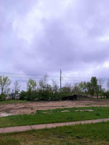 Lot 342 Old Kerry Road, Channahon, IL 60410 (MLS #11071911) :: Helen Oliveri Real Estate