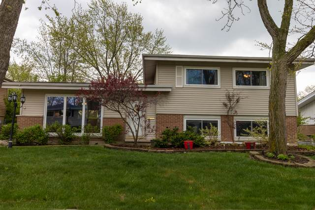 223 Berry Street, Park Forest, IL 60466 (MLS #11072010) :: Helen Oliveri Real Estate