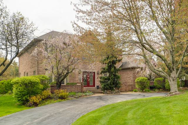 22311 W Thornridge Drive, Kildeer, IL 60047 (MLS #11072410) :: Helen Oliveri Real Estate