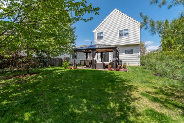 5470 Avalon Lane, Lake In The Hills, IL 60156 (MLS #11072490) :: Helen Oliveri Real Estate