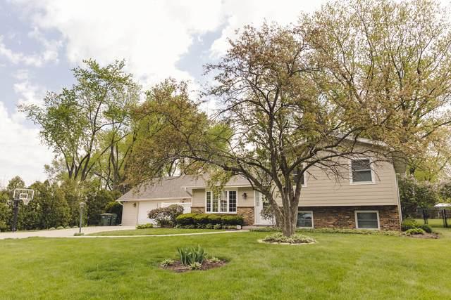 10341 Mayre Avenue, Naperville, IL 60564 (MLS #11072600) :: Helen Oliveri Real Estate