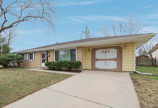 225 Serenade Court, Schaumburg, IL 60193 (MLS #11072626) :: Helen Oliveri Real Estate