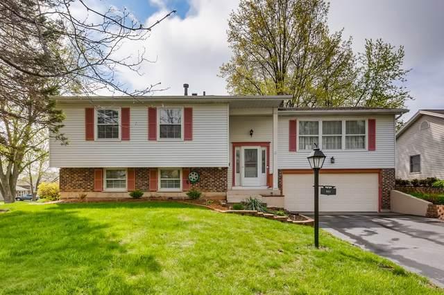665 Ginger Trail, Lake Zurich, IL 60047 (MLS #11072713) :: Helen Oliveri Real Estate