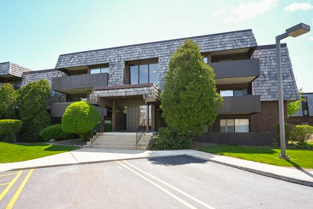 493 Timber Ridge Drive #206, Carol Stream, IL 60188 (MLS #11072769) :: Helen Oliveri Real Estate