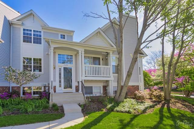 1123 Manchester Circle, Grayslake, IL 60030 (MLS #11072977) :: Helen Oliveri Real Estate